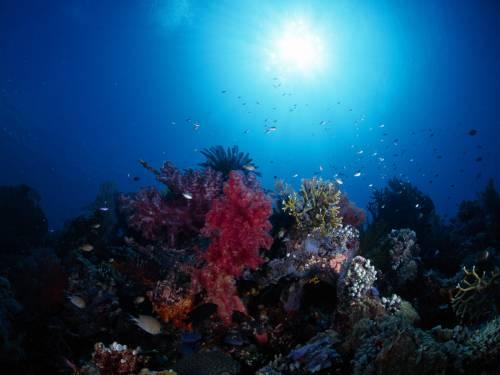 океан, геологічна історія, метан, протерозой