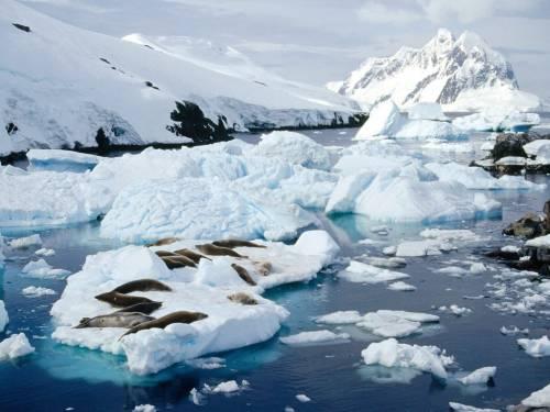 Сусітне, США, гребля, ГЕС, Аляска, проект