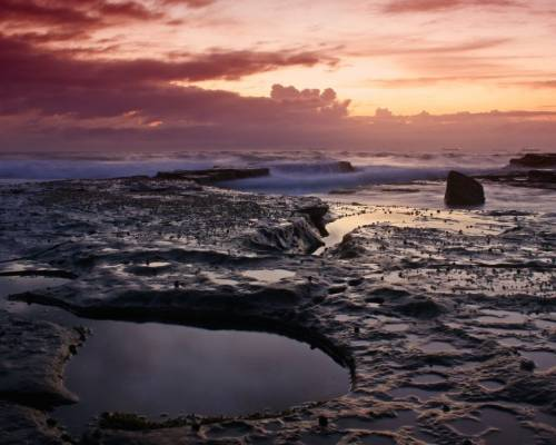 підкислення, океан, луг, проблема, Гавайський університет