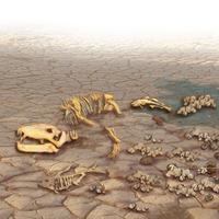 Земля, біокатастрофа, палеобіологія, США