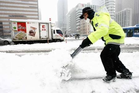 Південна Корея, снігопад, природні стихії, руйнування