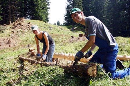 Швейцарсько-український проект Bergwaldprojekt