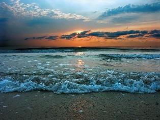 Чорне, море, 31 жовтня, Міжнародний день