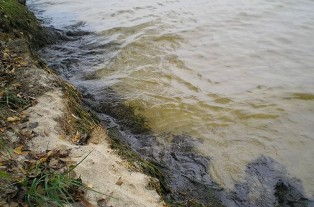 Одеса, забруднення, ставок, екологія