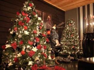 Різдво, Новий рік, екологія, ялинка