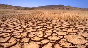Сомалі, посуха, голод, ООН
