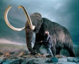 вимирання тварин, льодовиковий період, фауна, плейстоцен