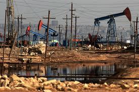 """Казахстан, нафтові родовища, НАК """"Нафтогаз України"""", Толкін, Боранколь, Табіл"""