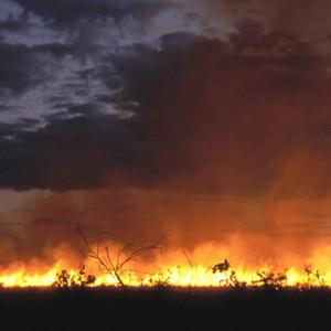 катастрофи, природні явища, лісові пожежі, Техас