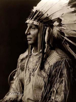 заселення Америки, популяція, індіанські народи, дослідження