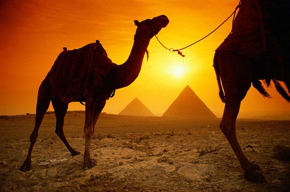 Єгипет, гексоси, археологічні розкопки, столиця