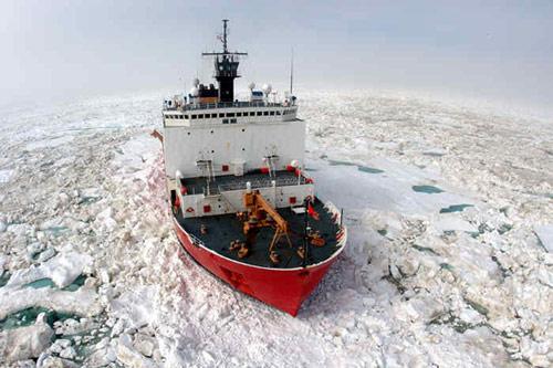 Північний Льодовитий океан, ртуть, забруднення, Арктика