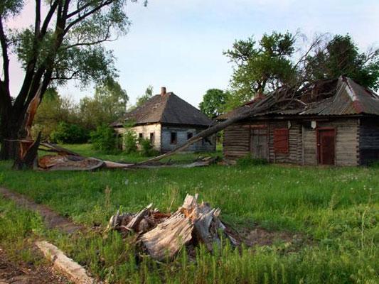 аварія, Чорнобильська зона, природа, Прип'ять