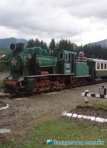 вузькоколійка, залізниця, Ужгород, семінар, Вигорлатські, 24 червня, 2010