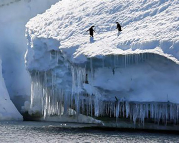 Антарктида тане