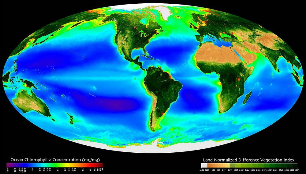 ураган, планктон, дослідження вчених