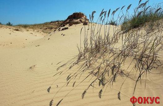 опустелювання, Україна, думка екологів
