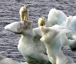 Шміттнер, МГЕЗК, клімат, парниковий ефект, глобальне потепління