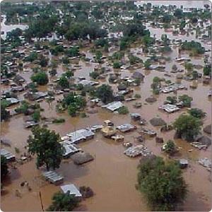 екологічна програма, ООН, гуманітарна криза, вплив людини