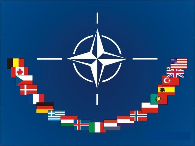 Міжнародні організації союзи