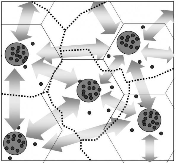 Просторова структура ландшафтів, вертикальна, горизонтальна, часова