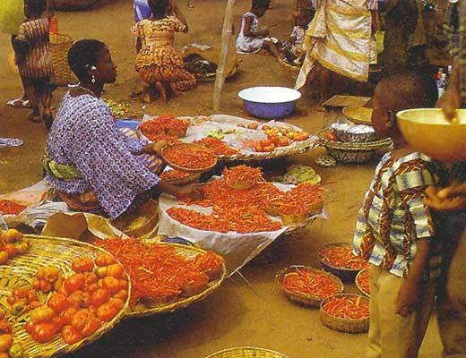 Західна Африка, загальна характеристика, господарство, Того, Сьєрра-Леоне, Сенегал