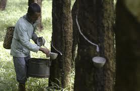Східна Африка, сільське господарство, промисловість, Малаві, Руанда, Сомалі